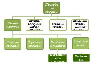 Реферат - Лесные и торфяные пожары - n1.docx