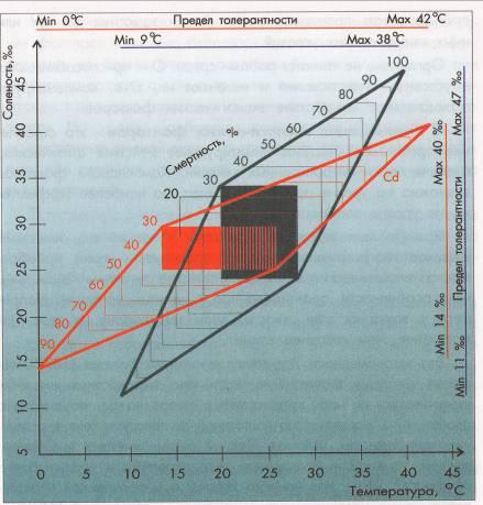 Экологические и природные факторы. Реферат. Экология. 2010-06-20
